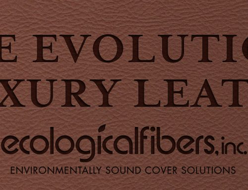 The Evolution of Luxury Leathers